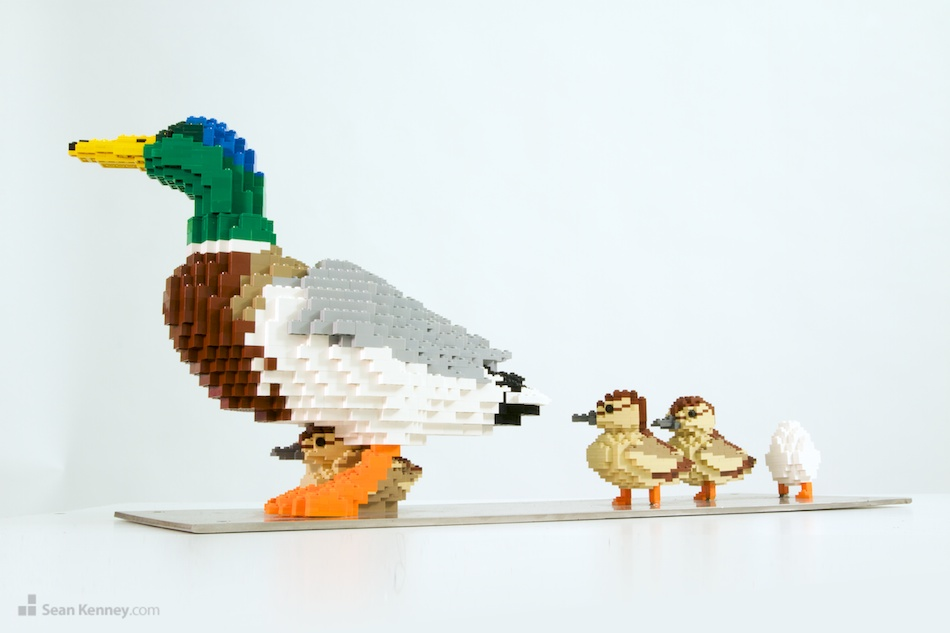 Duck-and-ducklings LEGO art by Sean Kenney