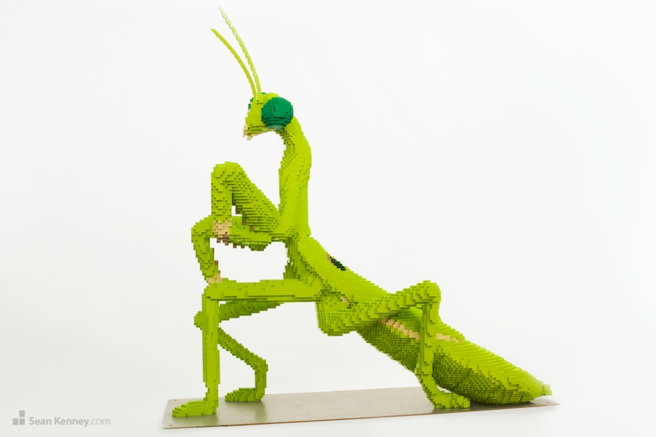 Praying-mantis LEGO art by Sean Kenney