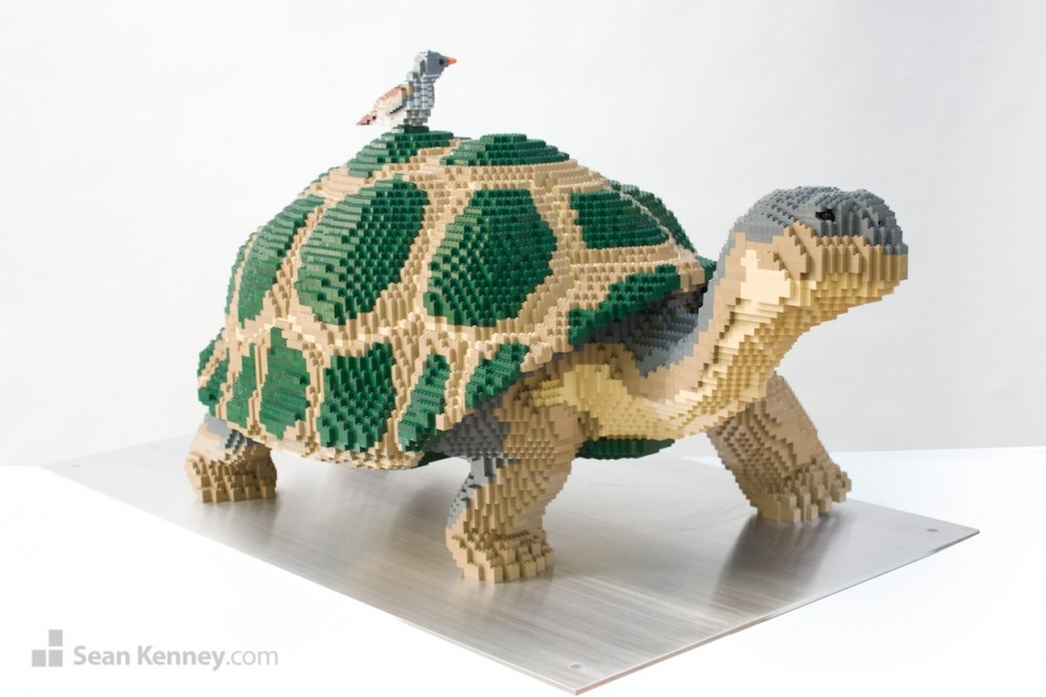 Galapagos-tortoise-and-finch LEGO art by Sean Kenney