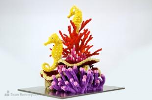 Seahorse 5