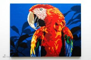 lego_parrot_mural 9