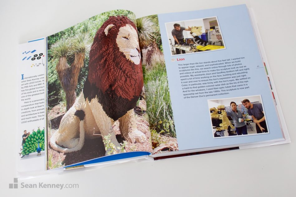 'Building Amazing Creations', Sean's ninth LEGO book