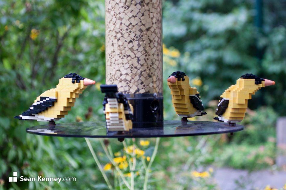 Goldfinches-on-a-birdfeeder LEGO art by Sean Kenney